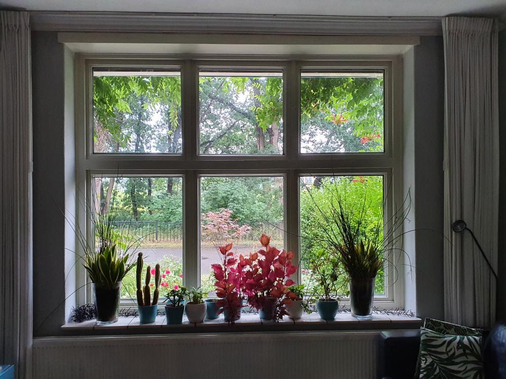 Huizenruil: Rijwoning in Nijmegen